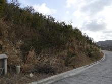 Parcel of land - SXM UPQ 446/2007
